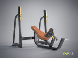 EVOST I - Oympic Bench Incline | DHZ Fitness