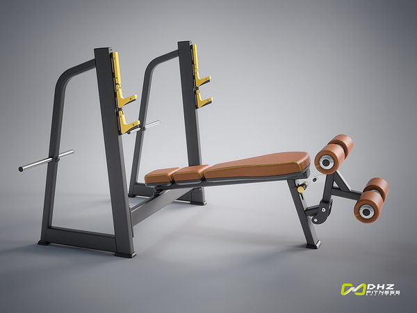 EVOST I - Oympic Decline Bench | DHZ Fitness