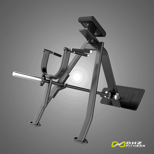 Fusion Pro - Incline level row   | DHZ Fitness